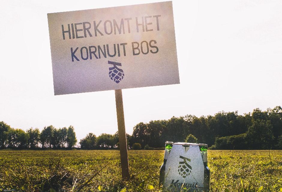 The Kornuit Forest
